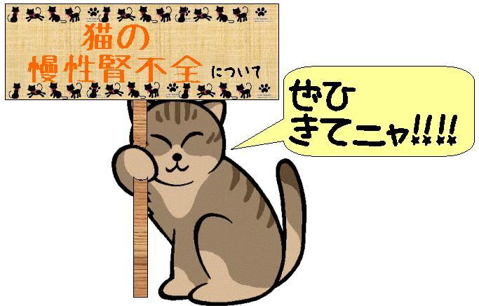 猫アカデミー